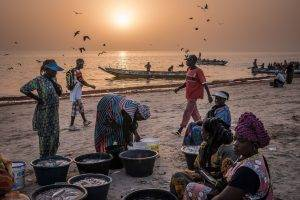 Japanese Grant Offers Relief  To Thousands Of Liberian Small-Scale Fishermen