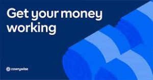 Nigerian Wealth Management Startup Cowrywise Raises Pre-Series A Funding