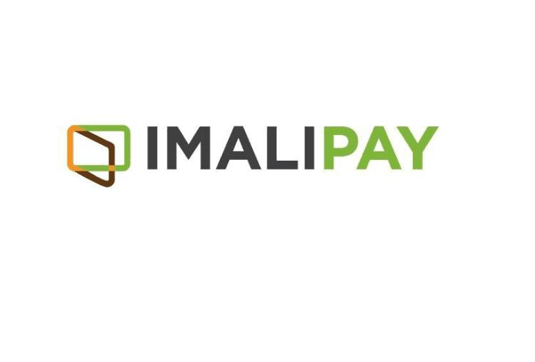 Nigerian FinTech Startup ImaliPay Raises Pre-Seed Funding
